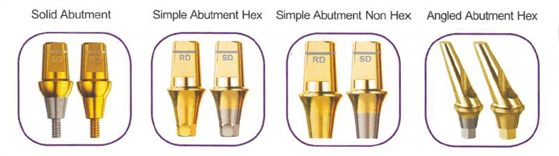Solid Abutment,Simple Abutment,Angled Abutment